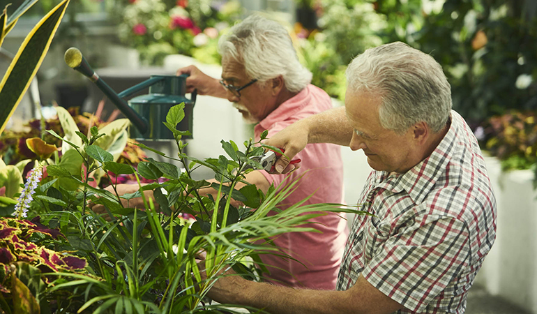 Residents gardening in the greenhouse