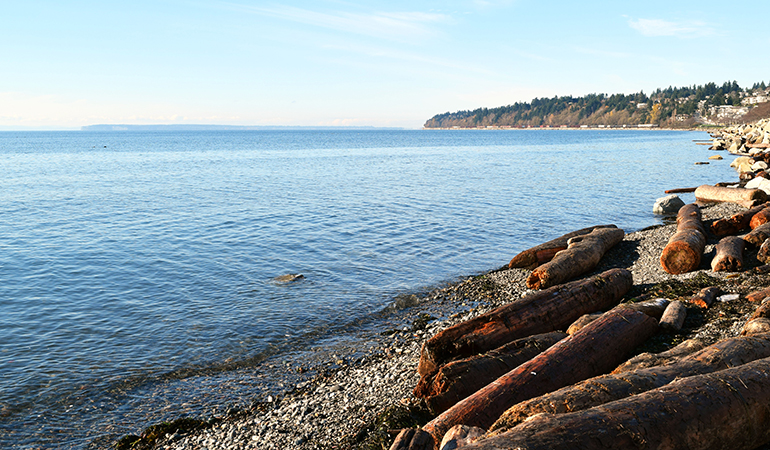White Rock Beach Shoreline