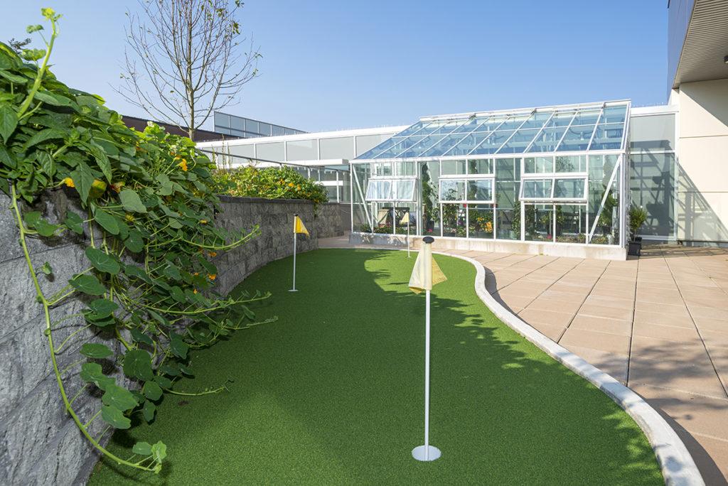 Greenhouse putting green